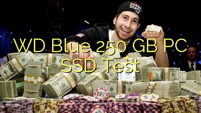 WD 블루 250 GB PC SSD 테스트