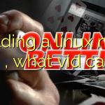 building a linux mint box , what vid card ?
