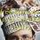 100 free spins casino bonus at SpinStation Casino