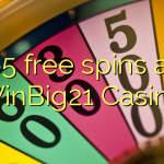 65 free spins at WinBig21 Casino