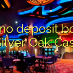 160 no deposit bonus at Silver Oak Casino