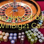 20 no deposit bonus at WinBig21 Casino