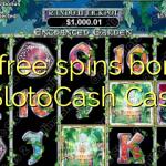 80 free spins bonus at SlotoCash Casino