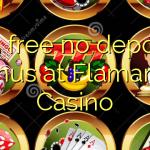 115 free no deposit bonus at Flamantis Casino