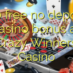 130 free no deposit casino bonus at Crazy Winners Casino