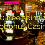 40 free spins at NoBonus Casino
