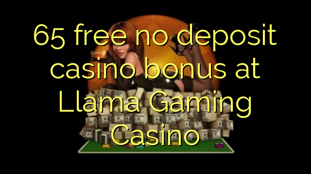 free online slots bonus 300 gaming pc