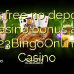 135 free no deposit casino bonus at 123BingoOnline Casino