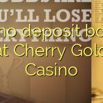115 no deposit bonus at Cherry Gold Casino