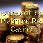 40 no deposit bonus at Platinum Reels Casino